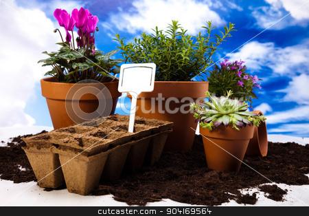 Garden concept, vivid bright springtime stock photo, Garden concept, vivid bright springtime by Sebastian Duda