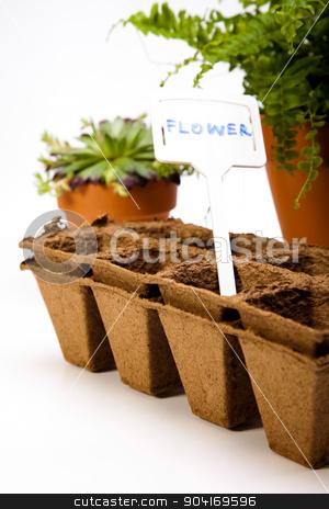 Spring garden, vivid bright springtime concept stock photo, Spring garden, vivid bright springtime concept by Sebastian Duda