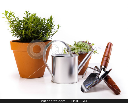 Gardening equipment of green plants stock photo, Gardening equipment of green plants by Sebastian Duda