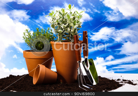 Flowers and garden tools on blue sky background stock photo, Flowers and garden tools on blue sky background by Sebastian Duda