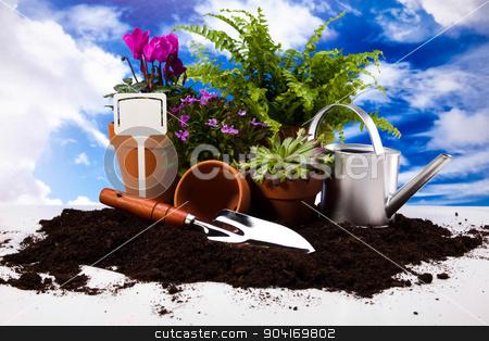 Gardening tools, vivid bright springtime concept stock photo, Gardening tools, vivid bright springtime concept by Sebastian Duda