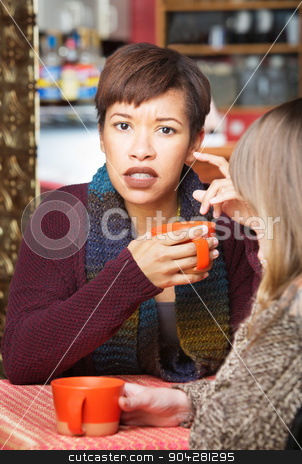 Astonished Woman with Friend stock photo, Astonished woman with friend at coffee house indoors by Scott Griessel