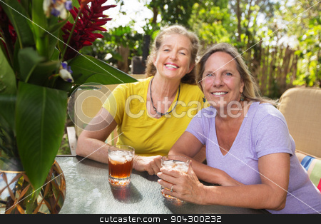 Happy Middle Aged Friends stock photo, Two happy middle aged Caucasian female friends by Scott Griessel