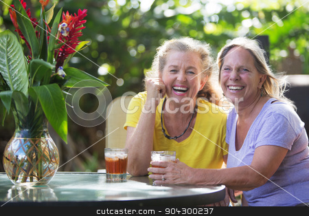 Laughing Friends at Table in Maui stock photo, Laughing middle aged Caucasian female friends at table by Scott Griessel