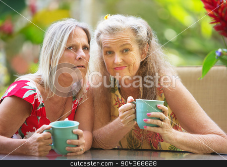 Pair of Doubting Friends stock photo, Pair of Caucasian doubting friends with coffee mugs by Scott Griessel
