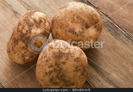 Unwashed fresh farm potatoes stock photo, Close up view of three unwashed fresh farm potatoes with clinging soil on a rustic wooden table for a healthy nutritious vegetable accompaniment to a meal by Stephen Gibson