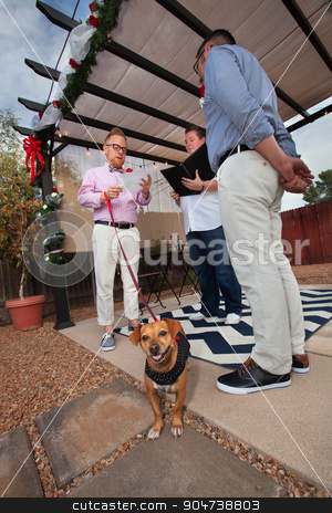 Dog in Gay Wedding stock photo, Dog on leash in marriage of gay men outdoors by Scott Griessel