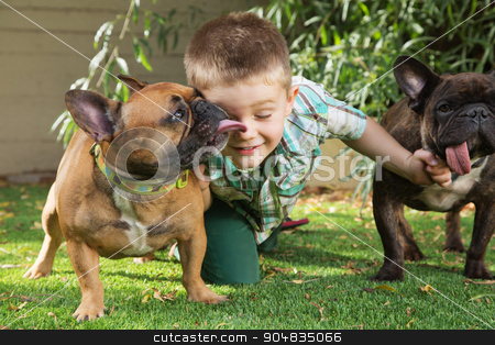 Cute Boy with Affectionate Dogs stock photo, Little boy playing with affectionate of dogs outdoors by Scott Griessel