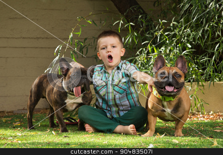 Howling Boy with Bulldogs stock photo, Child howling with pair of bulldogs outdoors by Scott Griessel