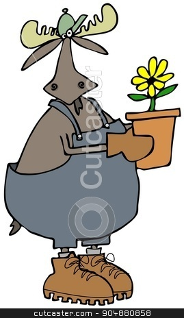 Bull moose gardener stock photo, Illustration depicting a bull moose wearing overalls and holding a potted plant. by Dennis Cox