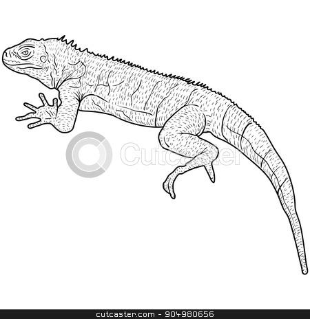 Lizard is goanna silhouette on a white background. Vector illustration