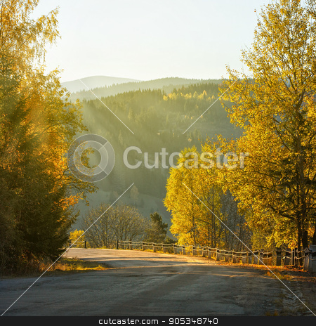 Rural landscape with old road in autumn forest