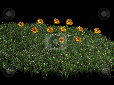 3D flowers and grass stock photo, 3D Flowers and grass on black background by John Teeter