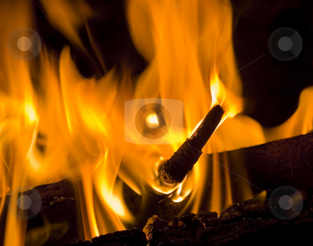 Wood burning stock photo, Wood burning in fireplace by John Teeter