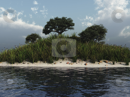 Tree with water illustration stock photo, Trees with sand and water nature 3d illustration by John Teeter