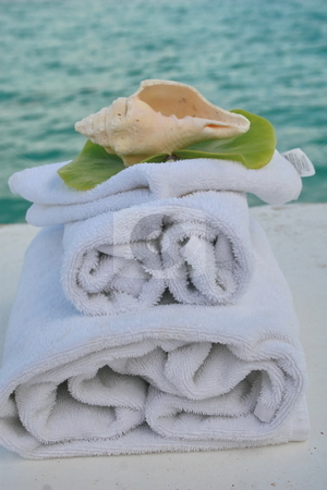 Shell spa stock photo, Spa supplies, towels, washcloth and tranquil setting. by Crystal Kirk