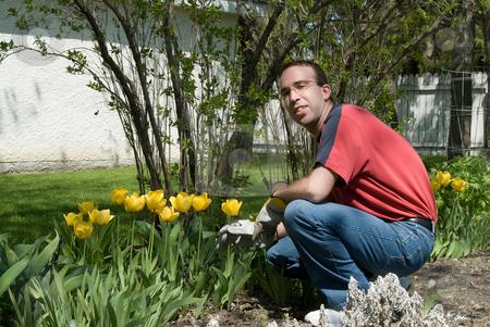 Happy Gardener stock photo, A happy gardener weeding the flower garden by Richard Nelson