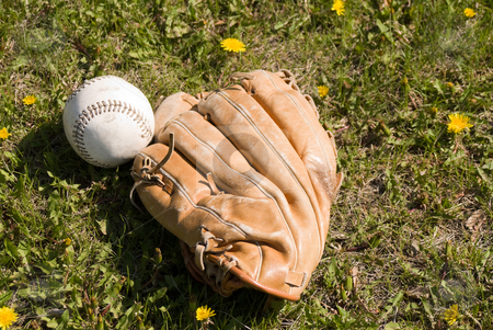 Baseball And Glove stock photo, A baseball and glove lying in the grass outside by Richard Nelson
