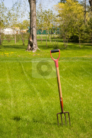 Pitchfork stock photo, A pitchfork stuck in the grass of a backyard by Richard Nelson