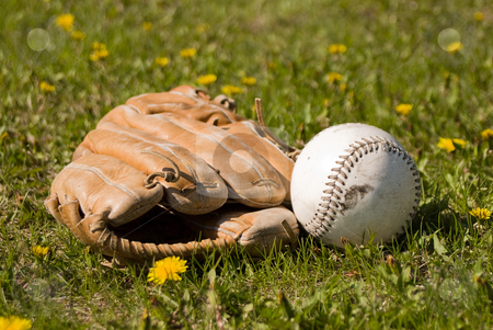 Mitt and Softball stock photo, A softball and mitt lying in the grass outside by Richard Nelson