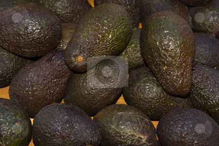 Avocado stock photo, Http://de.wikipedia.org/wiki/Avocado by Wolfgang Heidasch
