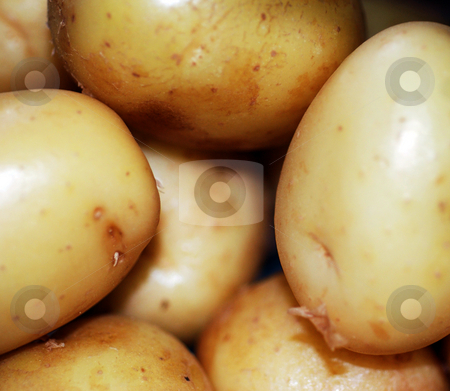 Pile of Potatoes stock photo, A close up photograph of a pile of raw potatoes by Philippa Willitts