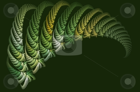 Fractal stock photo, A repeating fractal rendering resembling a fern leaf by Stephen Gibson