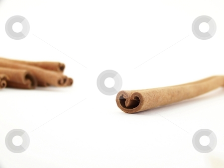 Cinnamon Sticks stock photo, Horizontal image of a single cinnamon stick with others visible in the background. by Jill Oliver