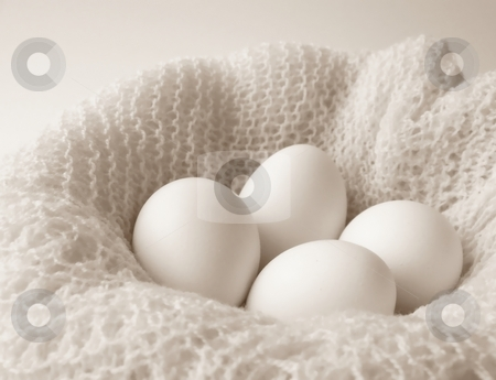 Eggs and Crochet, Black and White Horizontal stock photo, Image of four white eggs sitting in a bowl covered with a finely crocheted shawl.  Black and white with horizontal orientation. by Jill Oliver