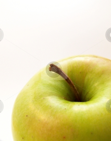 Green Apple stock photo, Image of a bright green apple.  White background and vertical orientation. by Jill Oliver