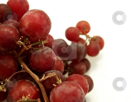 Red Grapes on White stock photo, Close up image of red grapes isolated on white background.  Horizontal orientation. by Jill Oliver