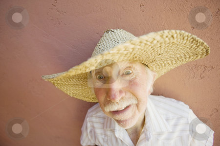 Crazy Man in a Straw Hat stock photo, Crazy Man in a Big Straw Hat by Scott Griessel