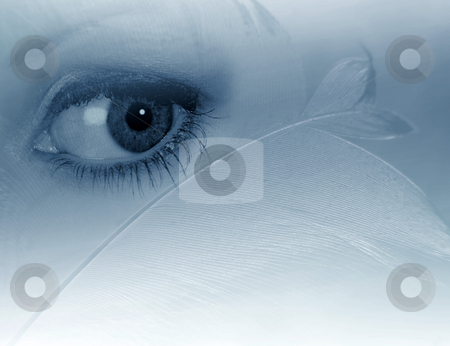 Eye and the feather stock photo, Isolated woman's eye overlaif on to feather abstract by Ronald Hudson