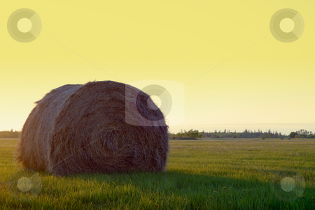 Hay Bale stock photo, A single hay bale in a field at sunset by Richard Nelson