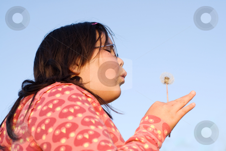 Making A Wish stock photo, A young brunette girl blowing on some dandelion seeds making a wish by Richard Nelson