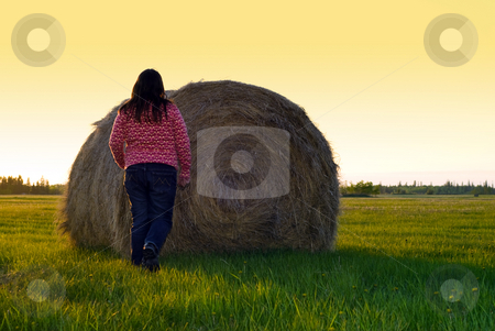 Farm Chores stock photo, A young girl checking a hay bale during sunset by Richard Nelson