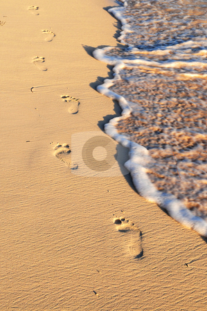 Tropical beach with footprints stock photo, Tropical sandy beach with footprints and ocean wave by Elena Elisseeva