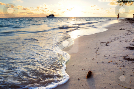 Tropical beach at sunrise stock photo, Tropical beach of a Caribbean island at sunrise by Elena Elisseeva