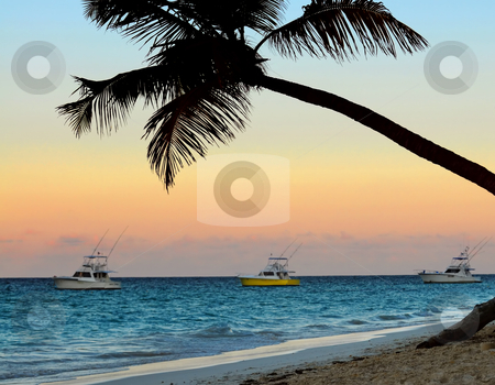 Tropical beach at sunset stock photo, Palm tree and fishing boats at tropical beach at sunset. Focus on palm tree. by Elena Elisseeva
