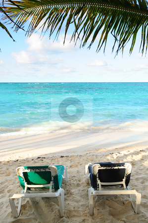 Beach chairs on ocean shore stock photo, Two beach chairs under a palm tree on the ocean shore in tropical resort by Elena Elisseeva