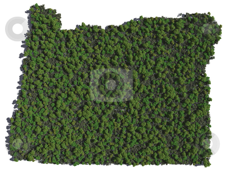 Oregon in Trees stock photo, The shape of Oregon grown in trees. by Allan Tooley