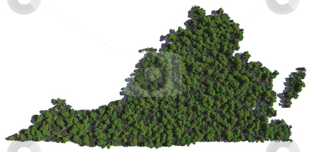 Virginia in Trees stock photo, The shape of Virginia grown in trees. by Allan Tooley