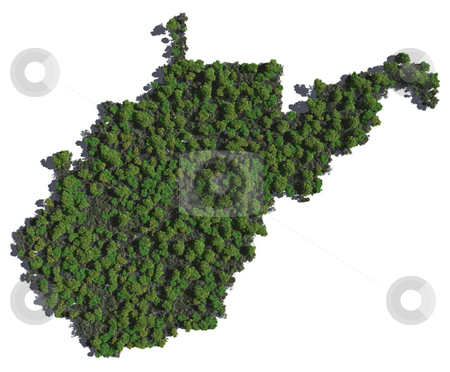 West Virginia in Trees stock photo, The shape of West Virginia grown in trees. by Allan Tooley
