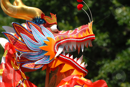Chinese Dragon stock photo, A Chinese Dragon head by Vince Clements