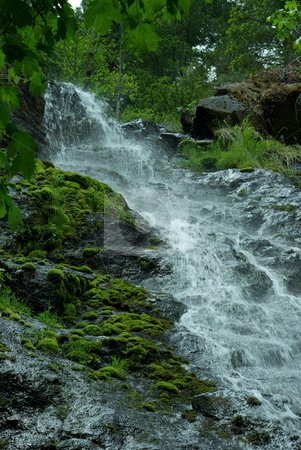 Waterfall And Moss stock photo, A small waterfall flowing down moss covered rocks. by Lynn Bendickson