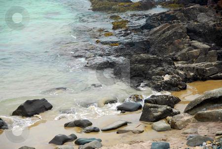Rocky coast  stock photo, Rocky coast of Atlantic ocean in Maine, USA by Elena Elisseeva