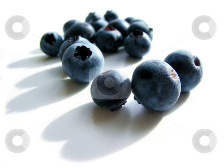 Blueberries macro on white stock photo, Fresh blueberries macro on white background with shadows by Elena Elisseeva