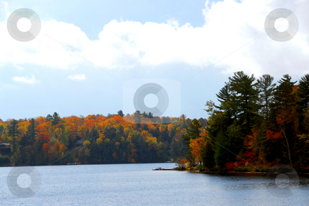 Autumn lake stock photo, Lake and forest in the fall in northern Ontario, Canada by Elena Elisseeva