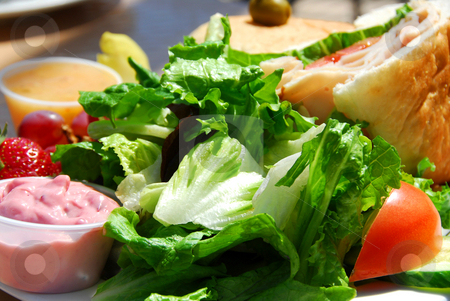 Healthy lunch stock photo, Healthy lunch of salad and sandwich by Elena Elisseeva