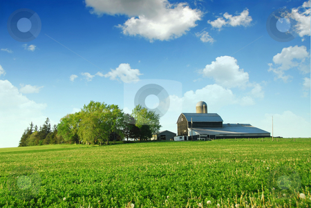 Farmhouse and barn stock photo, Farmhouse and barn among green fields by Elena Elisseeva